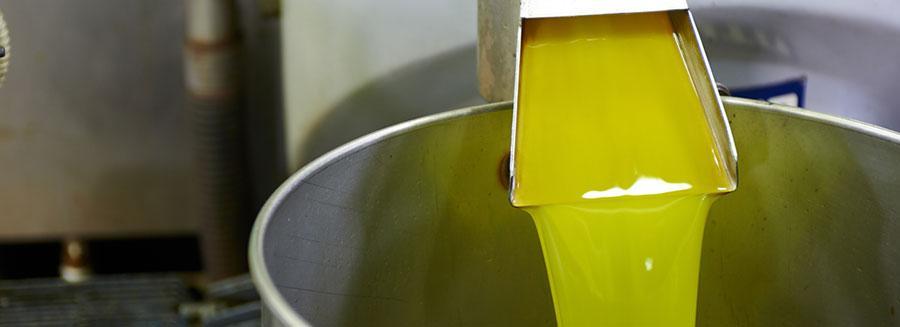 Main Types of Hempseed Oil