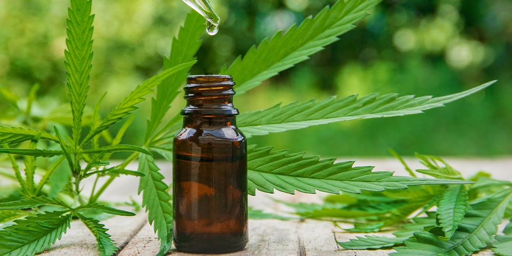 Cannabis oil - a discreet way to consume cannabis