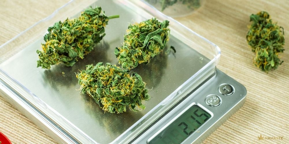 Does cannabis help with weight loss?