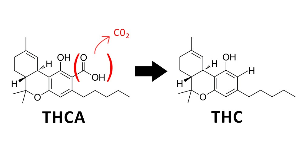 Decarboxylation is the process of making THC readily available in cannabis
